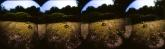 panorama-7-2-of-8