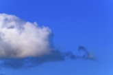 Cloud 007