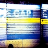 yellow-holga-1-of-4.jpg