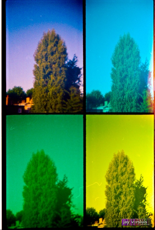 Huge Tree (warholised)