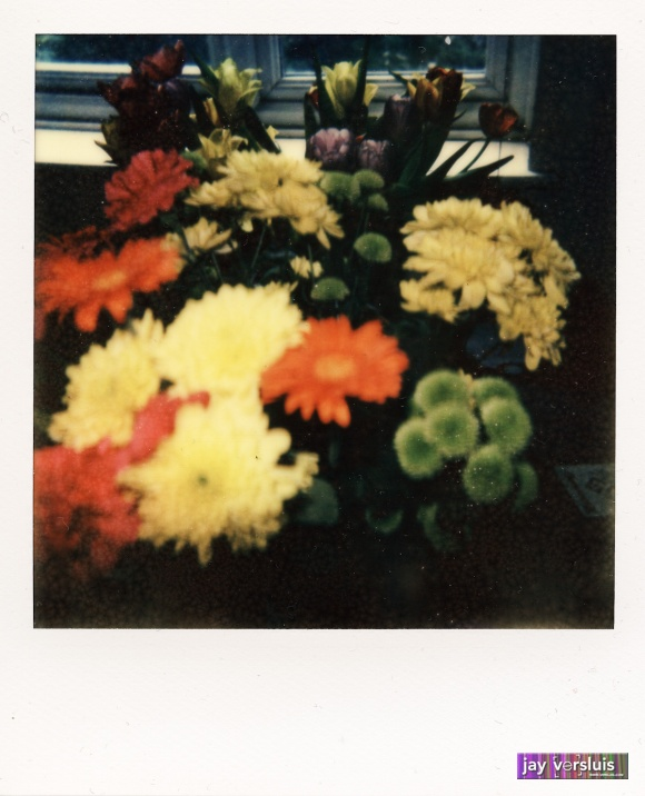 Flowers on PX 680
