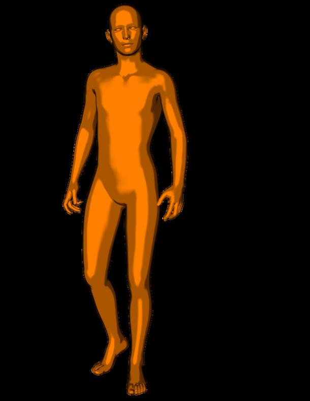 Genesis Orange Toon